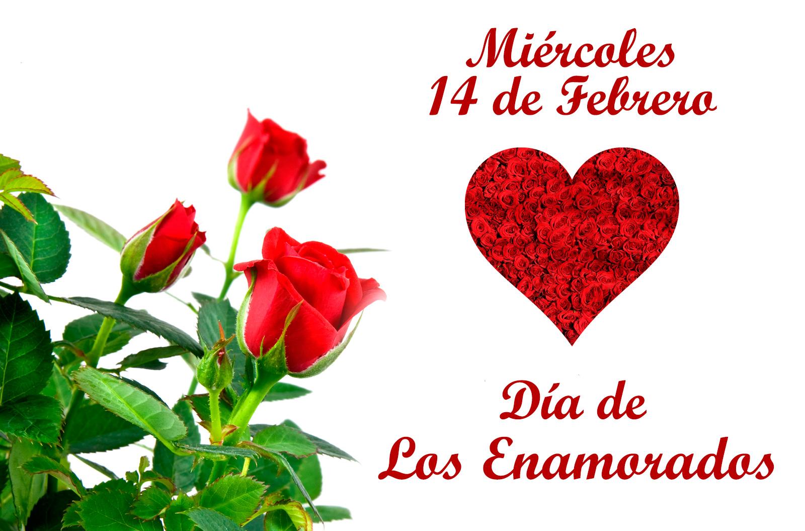 Flores Día de los Enamorados